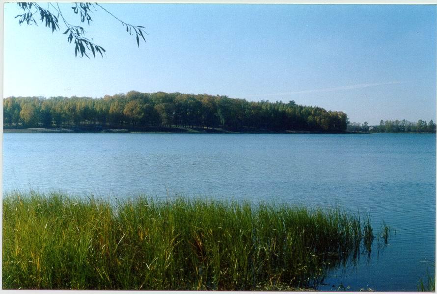 бологое озеро великое рыбалка